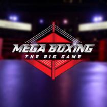 MegaBoxing